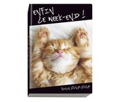 boligrafo-paper-mate-inkjoy-100-rt-expositor-262-unidades