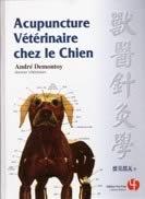 Acupuncture vétérinaire chez le chien