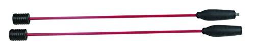 Swingstick to Move inklusive DVD mit Trainingsanleitung Übungen - Fitness Schwungstab teilbar aus flexiblem Fiberglas