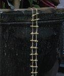 Fiddlehead Échelle de jardin à corde