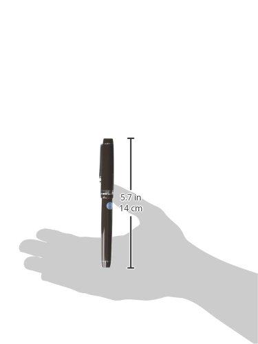 Fountain pen custom Heritage 91 M (character) [mountain] chestnut FKVH1MR-YGM (japan import)