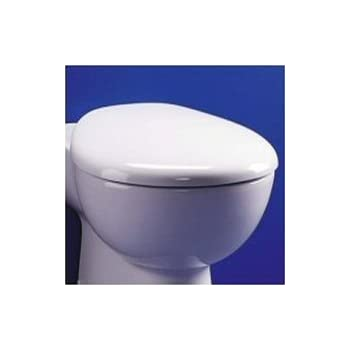 Enjoyable Ideal Standard E655001 White Kyomi Toilet Seat With Squirreltailoven Fun Painted Chair Ideas Images Squirreltailovenorg