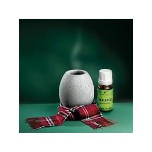 SudoreWell® Saunakko/Aromaschale aus Speckstein + Saunaaufguss Eukalyptus