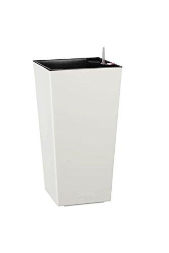 Dehner Kunststofftopf Elise mit Selbstbewässerungs-System