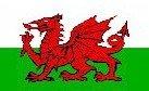 Bandera del País de Gales con Dragón Galés Oferta Especial 152.4 cm x 91.4 cm (5' x 3')