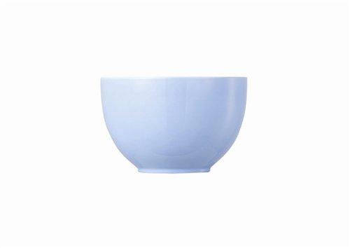 Rosenthal - Sunny Day Müslischale - Schale - Dessertschale - Pastel Blue - Pastellblau Ø 12 cm 0,45 l -
