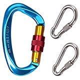 GYDING D-förmigen Aluminium Locking Kletterhaken, 25KN Klettern Karabiner Schraube auf Verriegelung Karabiner Outdoor Sport Tools für Klettern, Wandern und Abseilen (Blau 2+2 Kleine Geschenke)
