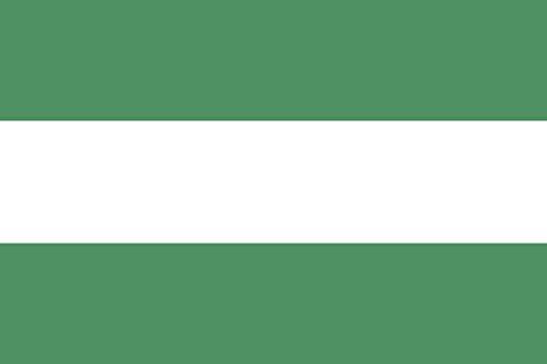 magflags-drapeau-large-capitanejo-santander-ecuador-90x150cm