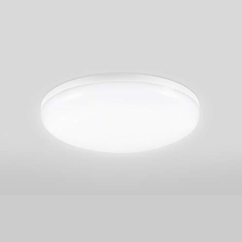 Viugreum led lámpara de techo, Blanco Frío/Blanco Cálido plafónes led techo, lampara de techo empotrada adecuada para salón, cocina, dormitorio, baño, escalera, porche, pasillo (24W Blanco Frío)