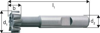 Forum T-Nutenfräser D851AB HSSE 16,0 x 8,0 mm, 4317784828703