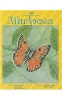 La Mariposa (Pinata: Stage 1) por Barbara Flores