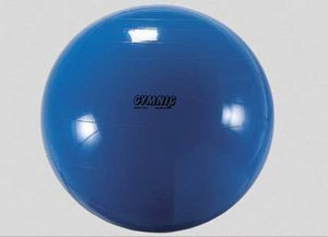 Sport 2000â Gymnic Gymnastic – Exercise Balls & Accessories