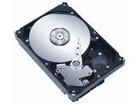 'MicroStorage 600ahdd01180GB Serie ATA II Festplatte–Festplatten (80GB, Serie ATA II, 7200U/min, 3,5, 1,5kg)