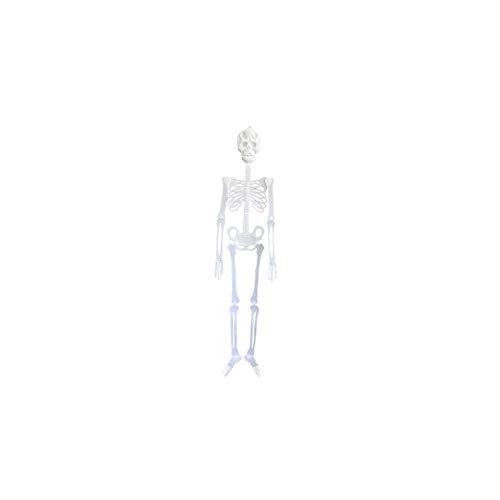 Decoración de Halloween juguete luminoso Esqueleto humano...