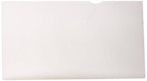 Dell Blickschutzfilter 31,7 cm (12,5 Zoll)