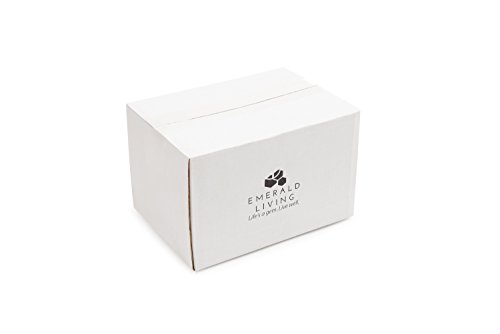 |10 pack| 3 fach Meal Prep Container. Frischhaltedosen Bento-Box Set mit Deckel. Spülmaschine, Mikrowelle, Gefrierschrank safe. BPA-frei Frishchalteboxen aus Kunststoff mit Trennwände [1L] - 8