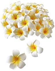 Haarspangen für Frauen/Mädchen, 5,1 cm, Hawaii, Plumeria, Schaumstoff, Blumen, für Hochzeit, Party, Strand, Dekoration, Haarschmuck, 12 Stück