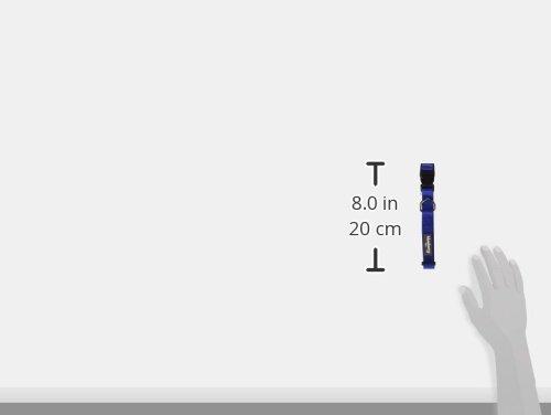 Blueberry Pet Hundehalsband Klassisch Einfarbig 2 cm M Basic Polyester Nylon Hundehalsband Langlebig – Royalblau, Passender Hundegeschirr & Hundeleinen erhältlich separate - 6