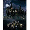 Lámina poster Escuela Hogwarts. Harry Potter. Collectors Artprint. 40...