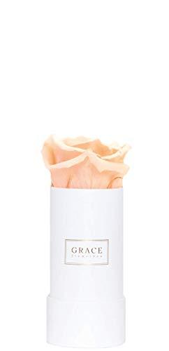 Romantische Rose Peach (GRACE Flowerbox | PERFECT PEACH | Roségold White Bambi Flowerbox | 1 echte konservierte Rosen | 1-3 Jahre haltbare Infinity Rosen | Bekannt aus