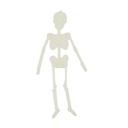 Winwinfly Skelett Halloween Dekoration Voller Körper Schädel Unheimlich Menschlichen Knochen Anatomischen Dekor Menschliches Skelett Modell (klein)