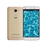 Lyf Water 9 (gold)