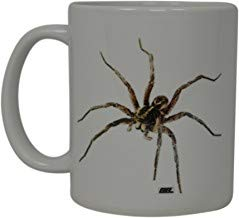 UUGOD Funny Coffee Mug Scary Spider realistic Brown Recluse Novelty Cup Great Gift Idea For Men Women Office Party Employee Boss Coworkers (Brown Recluse) -