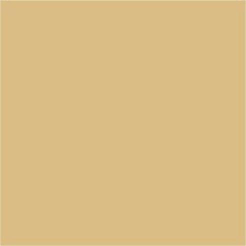 13,08EUR/L - 5L Schwimmbadfarbe entspr. RAL 1001 Beige Poolfarbe Fischbeckenfarbe Schwimmbeckenfarbe Schwimmbad Pool Fischteich Farbe Beschichtung Anstrich Fischteichfarbe