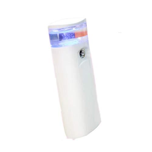 YLM Nano Mist Pulvérisateur Facial Portatif USB Rechargeable Mini Beauté Soins De La Peau Instrumen