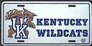 Kentucky Wildcats License Plate by License Plate Shop
