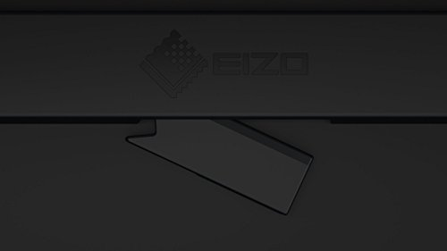 EIZO CG2420 24 Inch LCD LED Monitor Black Monitors