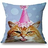 beautifulseason-20-x-20-inches-50-by-50-cm-cat-pillowcase2-sides-is-fit-for-montherboy-friendpubchai