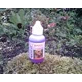 Quistel Soothing Ear Cleaner for dogs cats and small animals 50ml