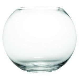 5 Inch Bubble Ball Fishbowl Vase