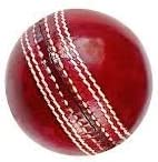 Forever Online Shopping Yorker 2 Part International Standards Durable Genuine Leather Cricket Ball (Red)