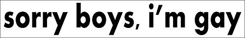 sorry boys i'm gay STICKER DECAL VINYL BUMPER Pride Prank Joke Funny DCOR CAR TRUCK LOCKER WINDOW WALL NOTEBOOK by Unbranded* -