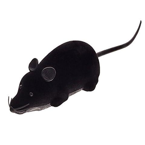 Smartfox RC Fernbedienung drahtlose ferngesteuerte Spielzeug Spielmaus Maus Ratte für Haustier Katze Hund in schwarz