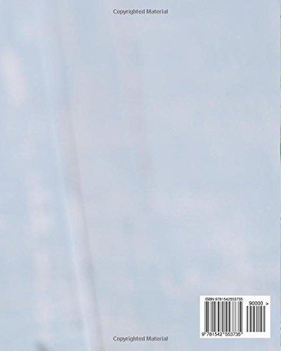 Spiralschneider Kochbuch: Unsere besten Rezepte für Gemüsenudeln & Co. - 2