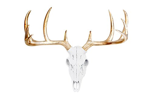 Deer Skull Animal Head von Wall Charmers | Mini Faux Fake TAXIDERMIE Kunstharz Antler Mount Decor fauxidermy Kunststoff montiert Keramik Deko, White + Metallic Gold, L (Deer Antler Mount)