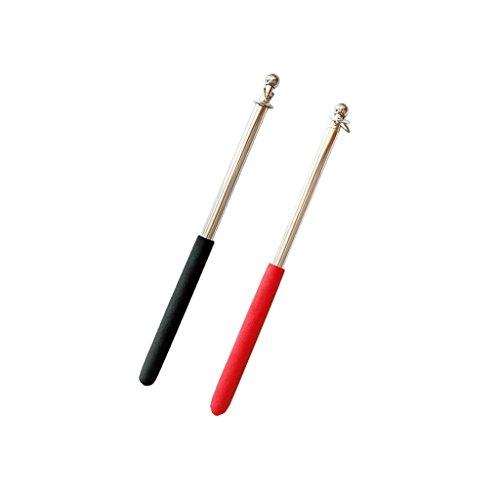 Sharplace 2pcs Télescopique en Acier Inoxydable Mât Bannière Drapeau Panneau Pliable Bâtons 1m