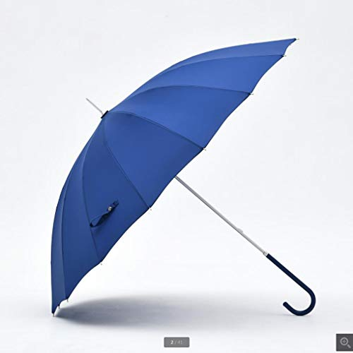 Zore Gy Umbrellas Krücken Regenschirm tragbarer Regenschirm Sonnenschirm wetterfester Regenschirm Geschäftsregenschirm langstieliger Regenschirm HYBKY (Color : D)
