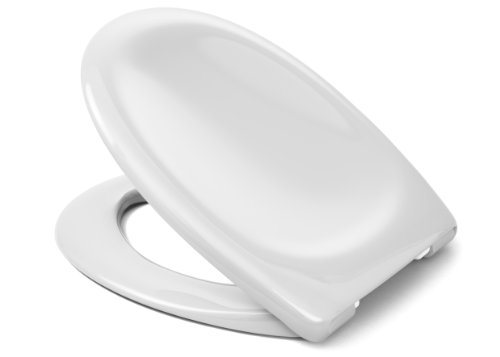 Preisvergleich Produktbild CEDO Palm Beach 525238 Toilet Seat with Lid