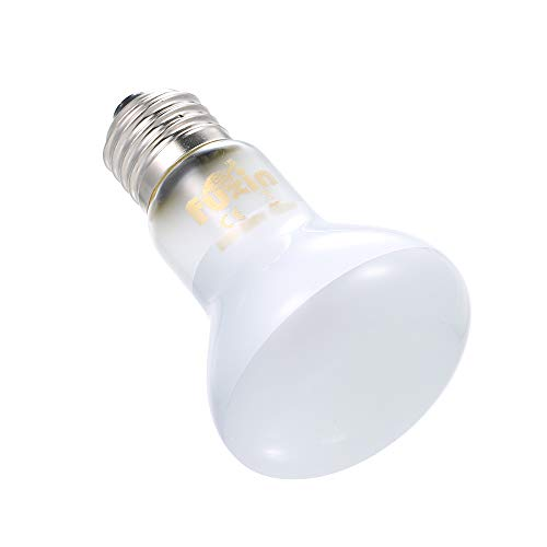Lilideni AC220-230V 75 Watt Wolfram Wärmeemitter Licht Pet Reptile Lampe E27 Sockel Halter Tragbare Tag Gebrauch -
