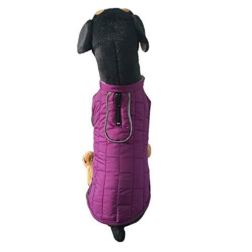 (Dragon868 Wasserdichter Tierhund Winter Warme Mängel-Welpen-Doppelseitige, um Jackettkleidung zu tragen)