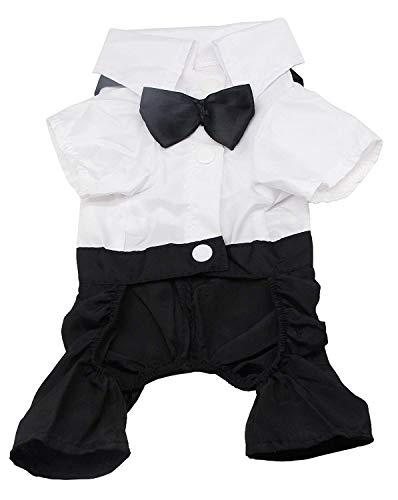 QiCheng & LYS Hund Kleidung Haustier stilvolle Anzug Fliege Kostüm, Hochzeit Shirt formalen Smoking mit schwarzer Krawatte Anzug (XXL) (Xxl Hund Kostüme)