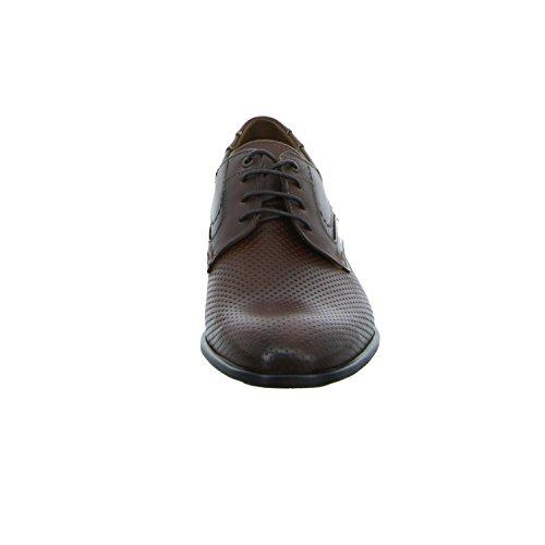 LLOYD  17-049-32, Chaussures à lacets homme marron foncé