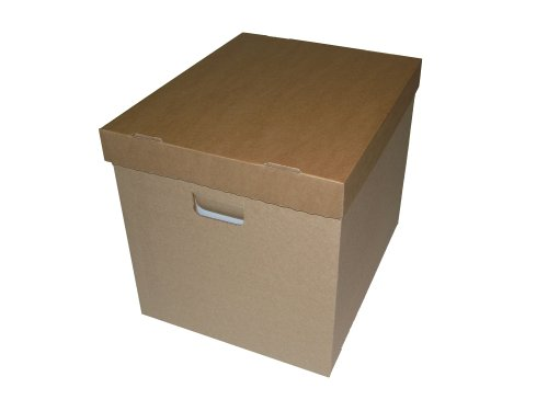 Protected LP Schallplatten Papp Box