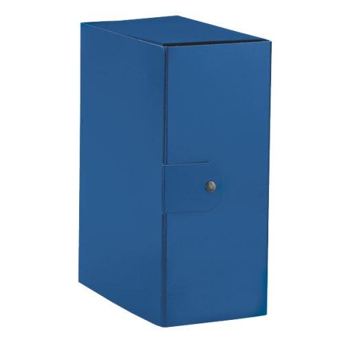 Esselte 390395050 Scatole Portaprogetti Delso Order