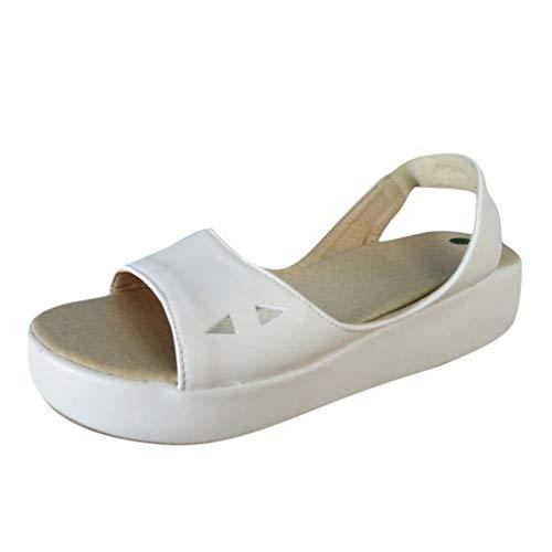 LILIHOT Roman Hausschuhe Sandalen Damen Sommer Flip Flops Bohemian Flach Zehentrenner Frauen Leder Wohnungen Casual Sommer Schuhe Mode Outdoor Sandalen (Jelly-damen-uhr)