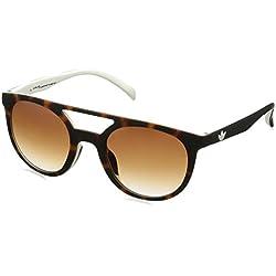 Damen Sonnenbrille adidas Originals AOR003 Havana Brown/White Sonnenbrille